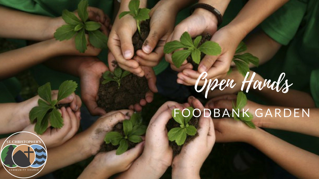 Open Hands Foodbank Garden
